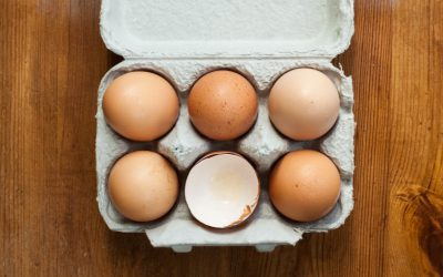 Benefits of Consuming Egg Products